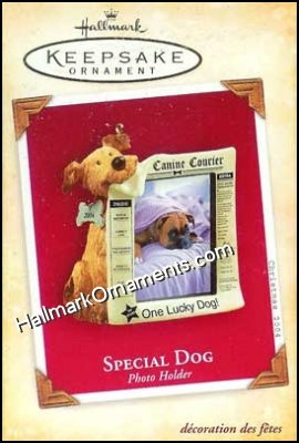 2004 Special Dog