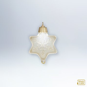 2012 Ornament Spotlight