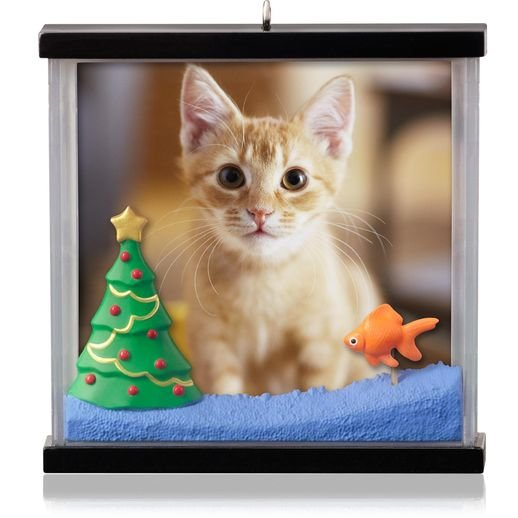 2014 Picture Purrfect, Cat, Photo Holder