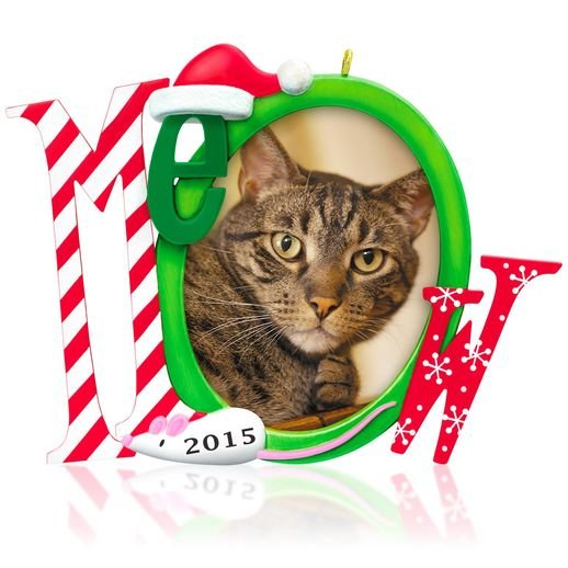 2015 The Cat's Meow, Photo Holder