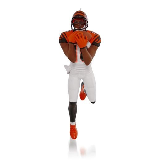 2015 A. J. Green, Football Legends Compliment