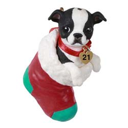 2021 Boston Terrier, Puppy Love #31 - PRE ORDER NOW - SHIPS AFTER JULY 12