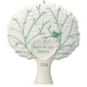 2014 Born in Our Hearts, Adoption