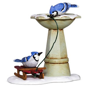2018 Bathing Blue Jays , Marjolein's Garden #5