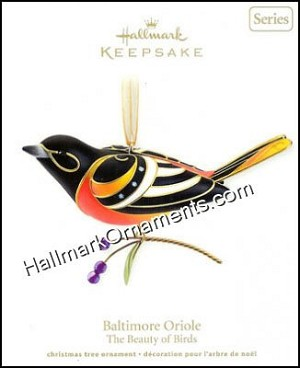 2011 Baltimore Oriole, Beauty of Birds #7